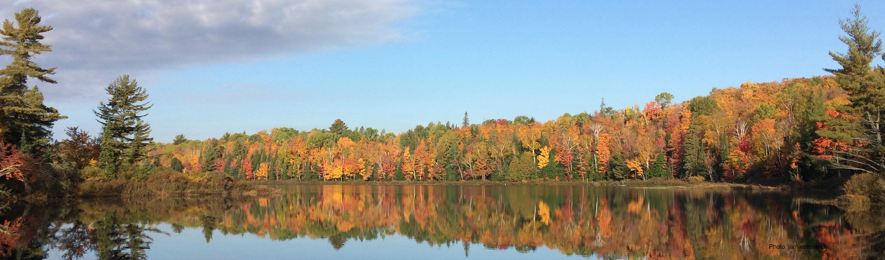 lakeview of trees in beautiful fall colours